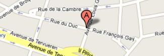 Carte de Google