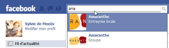 Page officielle d'entreprise sur Facebook