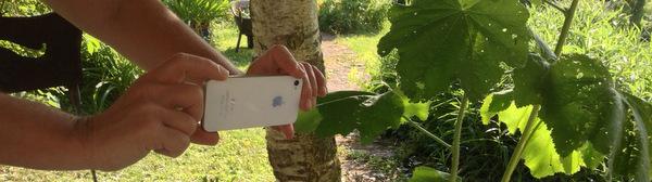 Monter une vidéo avec son smartphone