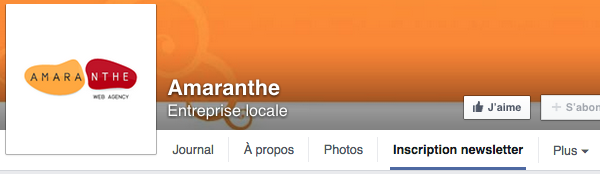 Inscription newsletter sur Facebook