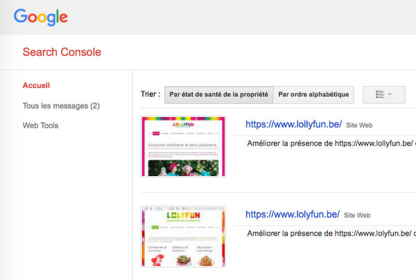 Deux sites dans la search console : l'ancien et le nouveau