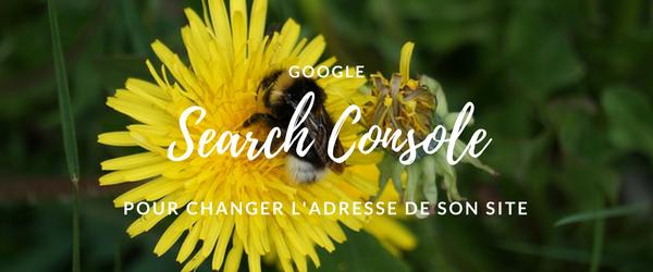 Changer l'adresse de son site et prévenir google via la Search Console