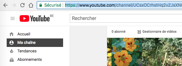 URL chaîne YouTube