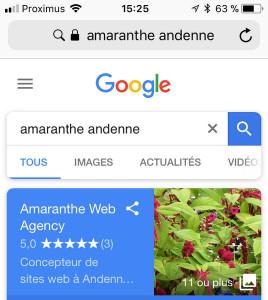 Affichage fiche Google MyBusiness sur mobile
